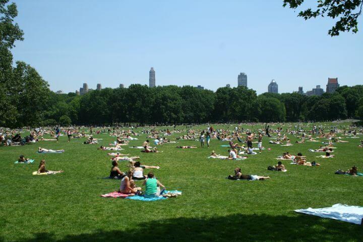 Central Park - Una inmensidad verde a tu alcance en plena urbe