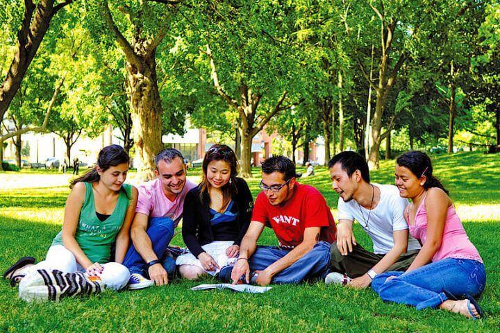 Programa sociocultural completo - Actividades organizadas por la escuela para que disfrutes de Toronto y sus alrededores