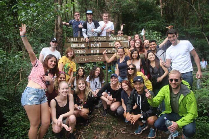 Blue Montains - Conoce el bosque australiano. Si tienes suerte, verás a algún koala dormitando entre los eucaliptos