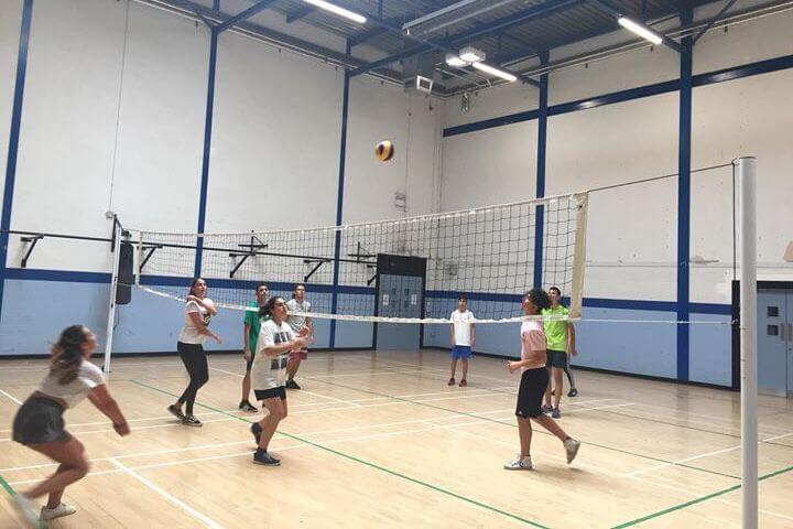 Instalaciones deportivas dentro del campus universitario.  - Completo programa de actividades